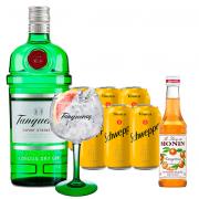 Gin Tanqueray + Miniatura Monin Tangerina.