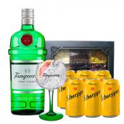 Kit Gin Tanqueray com Taça Cristal
