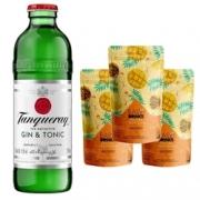Kit - 1 Tanqueray G&T 275ml + 3 Sachês Easy Drink de Frutas Tropicais 100g