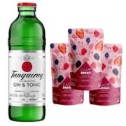 Kit Tanqueray G&T + Easy Drink Frutas Vermelhas.