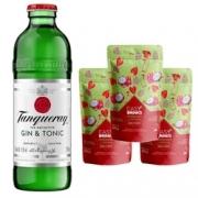 Kit - 1 Tanqueray G&T 275ml + 3 Sachês Easy Drink de Morango e Pitaya 100g