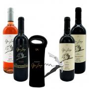 Kit 4 Vinhos Gran Amigo - Ganhe Bag Cooler e Saca Rolhas Gran Amigo