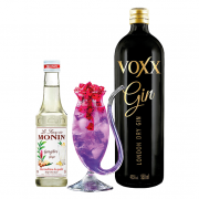 Kit Gin Voxx com Copo Especial