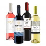 Seleção Vinhos - Vivaá Variental Malbec Rose 750ml, Rumores Malbec 750ml, Toro Negro Cabernet Sauvignon 750ml e Rapa Nui Sauvignon Blanc 750ml