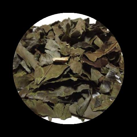 Chá Banchá Folhas 250g