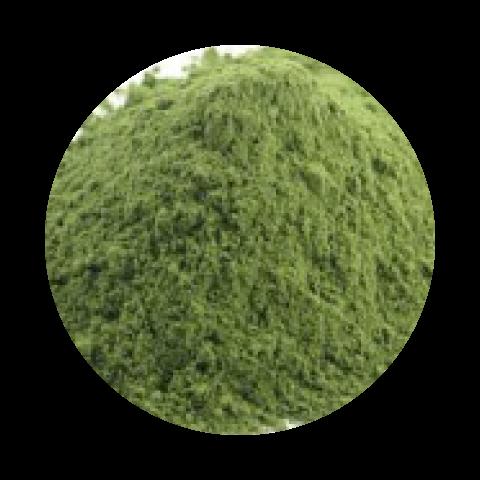 Espinafre em Pó 250 g