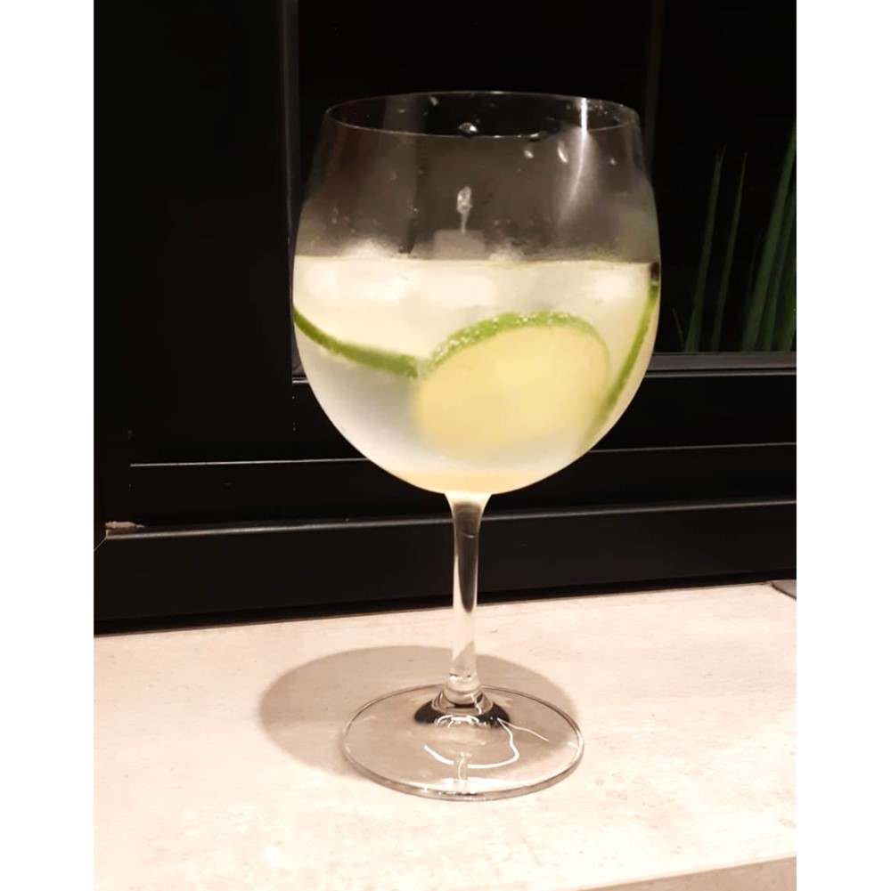 Kit Gastro 02 Taças Roberta para Bourgogne ou Gin em Cristal Titanium 600mL - Bohemia
