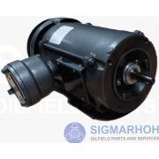 Motor Elétrico / Eletric Motors