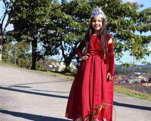 Vestido De Luxo Princesa Bordô Veludo Com Tule