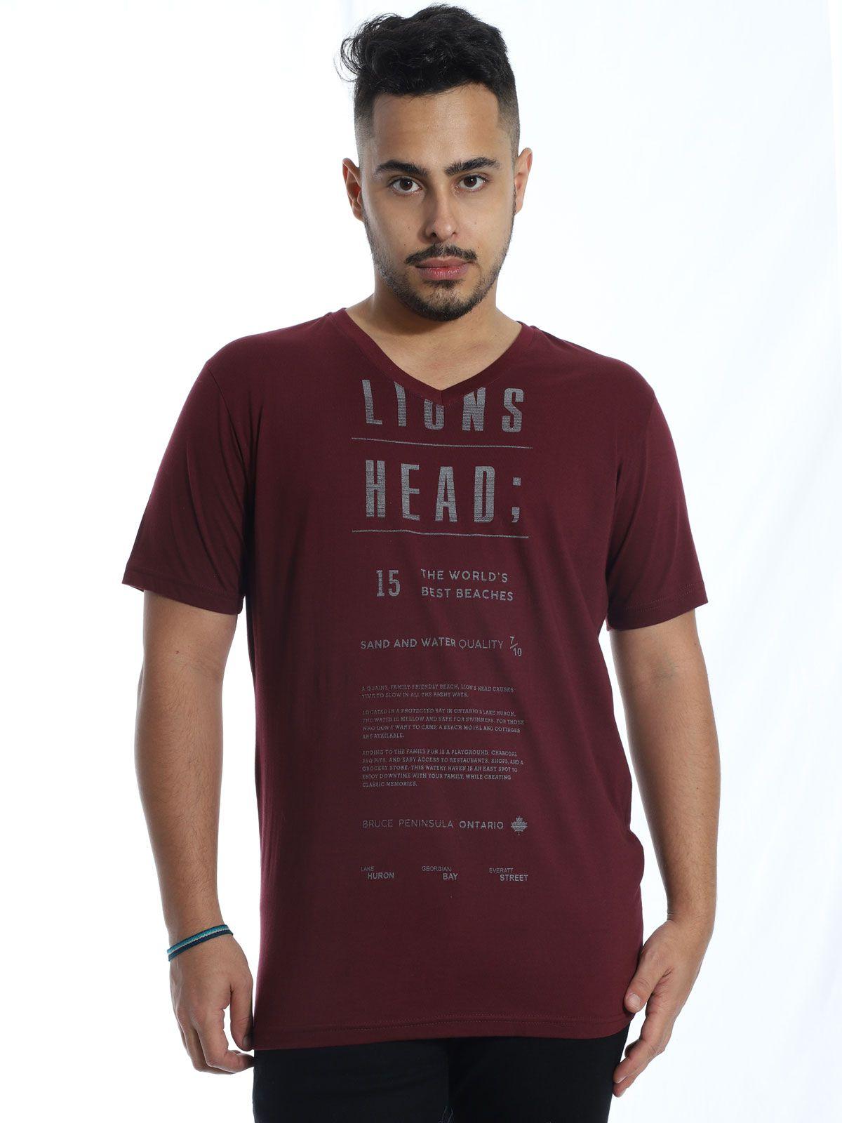 Camiseta Anistia Básica Decote V. Lions Vinho