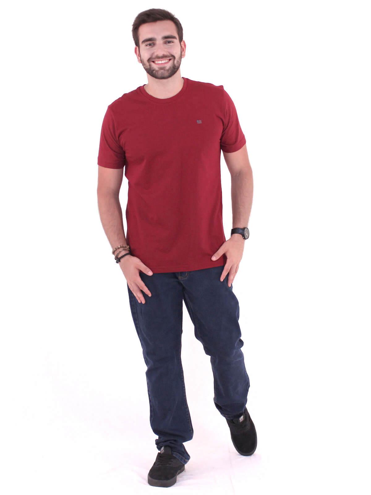 Camiseta Masculina Básica Anistia Flag Vinho