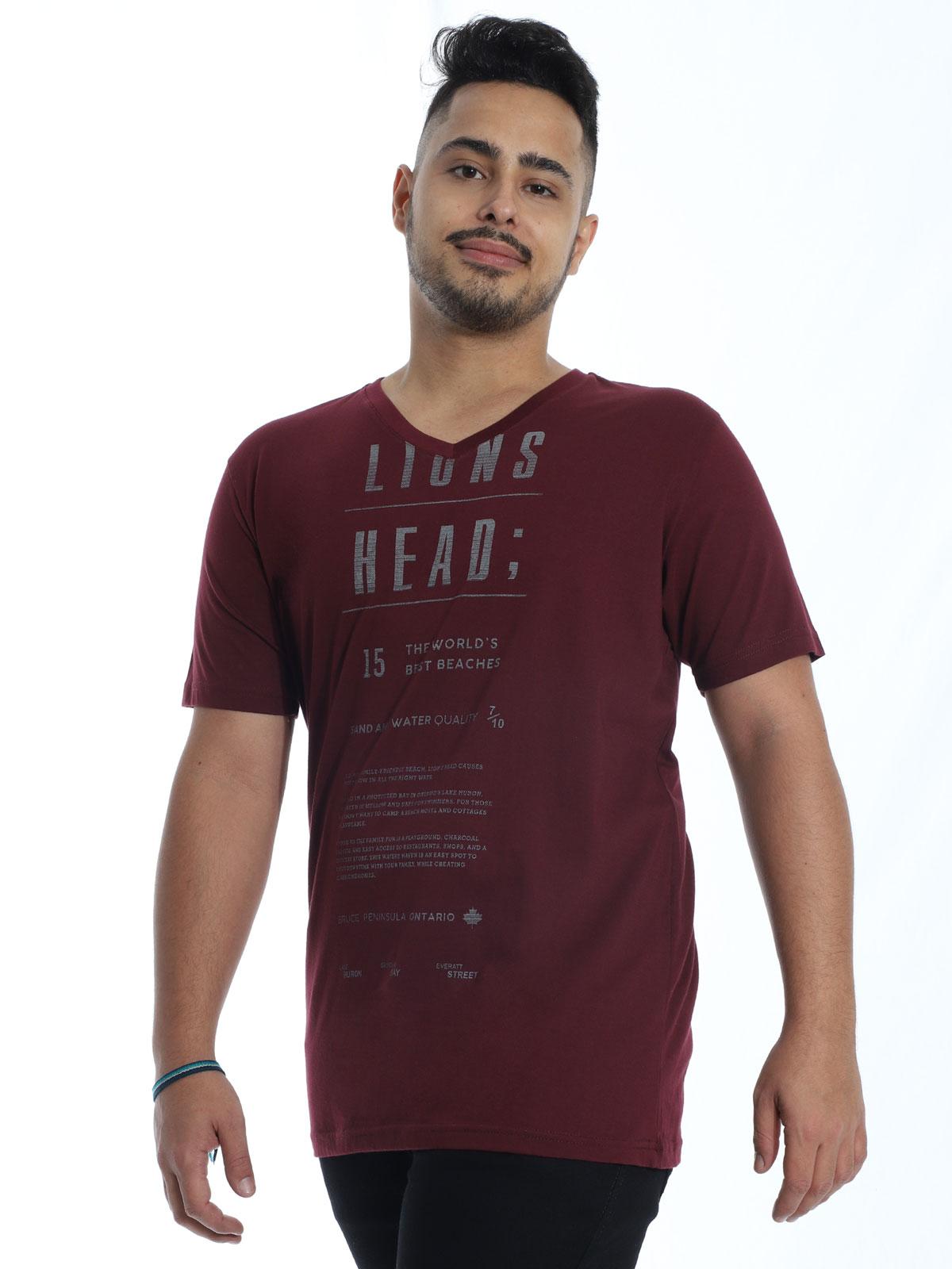 Camiseta Masculina Básica Decote V. Manga Curta Lions Vinho