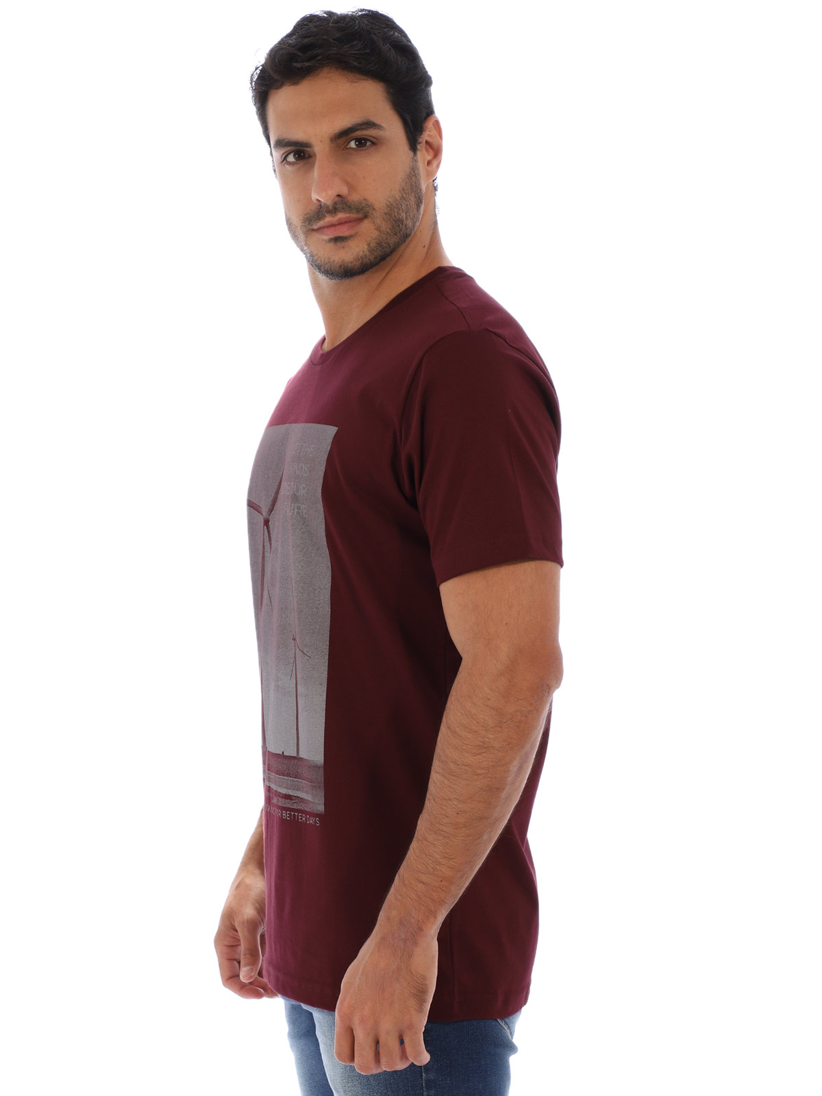 Camiseta Masculina Básica Manga Curta Estampa Aeolic Vinho