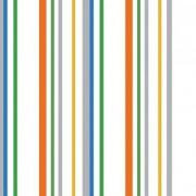 Papel de parede Renascer Listras Coloridas