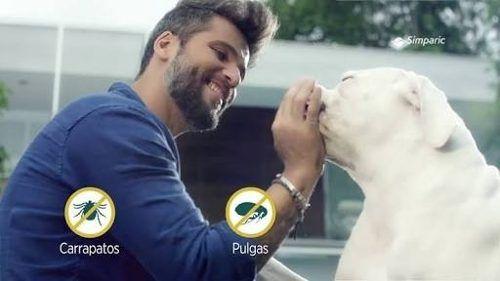 Antipulgas para Cães Simparic 2,6 A 5 Kg  10mg Com 3 Comprimidos
