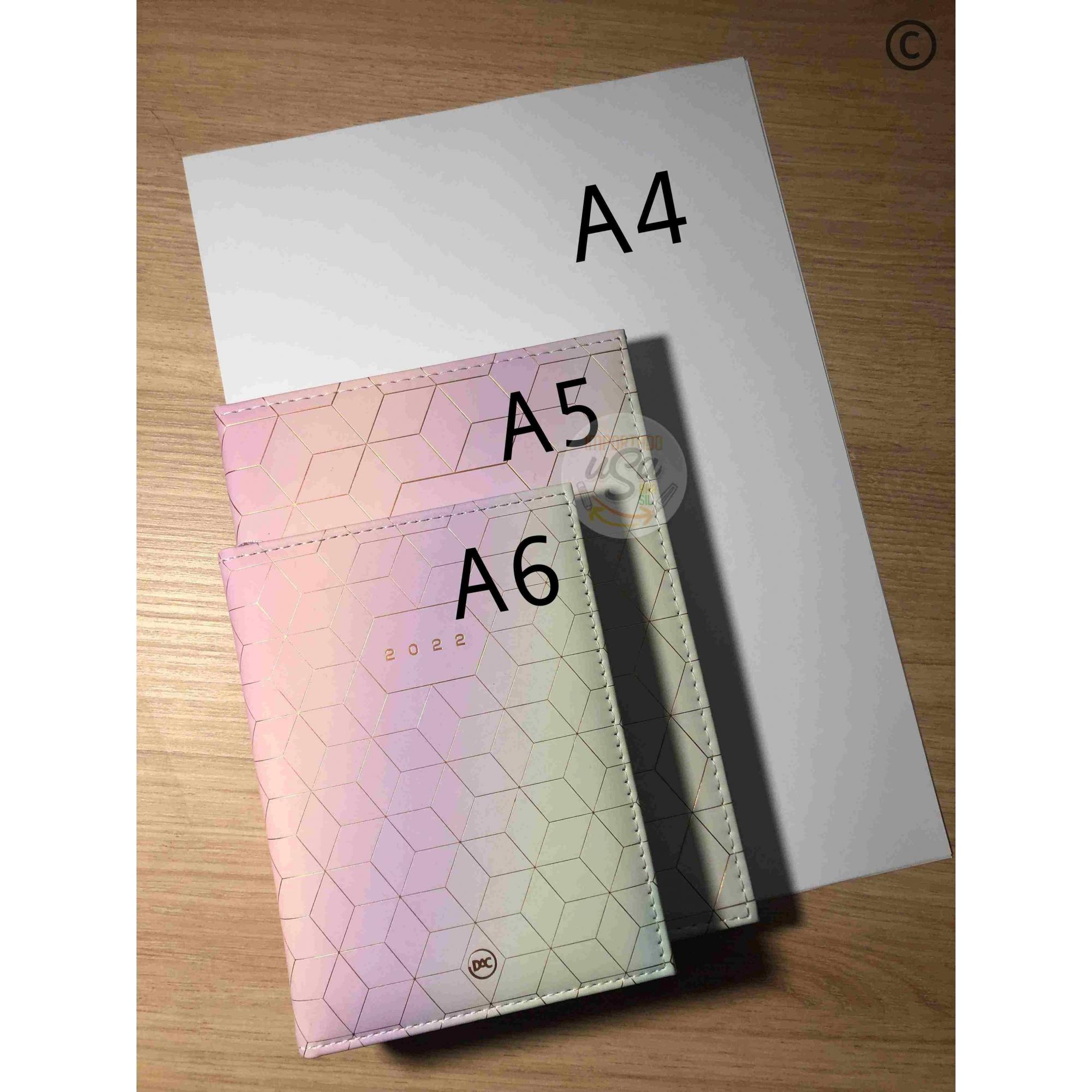 DAC, Agenda Executiva Mini 2022 - Mickey ou Minnie c/ 336 Páginas - A6