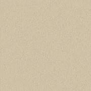 Formica Padrão Unicolor L 108 Ovo TX 0,8