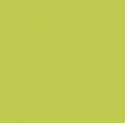 Formica Padrão Unicolor Verde Oasis L011