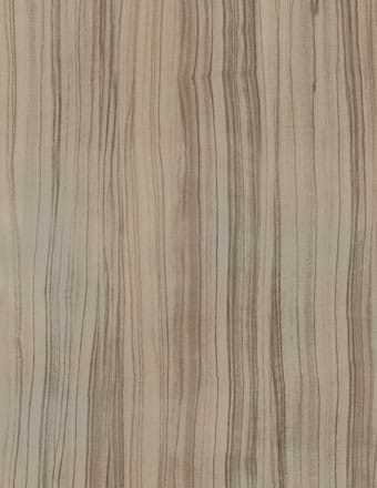 Formica Padrões Madeirados M 882 Olive Tree TX 0,8