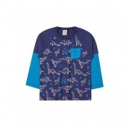 Camiseta Infantil M/L Dinos - Costão Mini