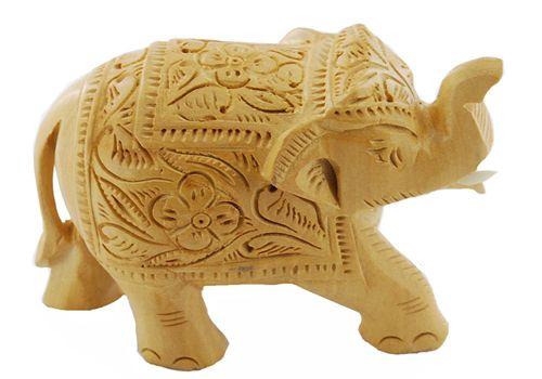 Elefante  Indiano Colecionador