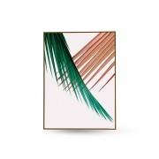 Quadro Decor Coleção Folha Palmeira Cores A