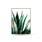 Quadro Decor Coleção Cactus Espada A