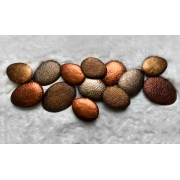 Escultura Decor Parede Bronze Eggs