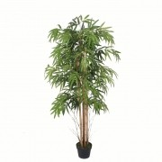 Planta Bambu Caule Natural Permanente 2,10cm