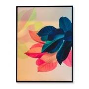 Quadro Coleção Plantas Abstratas Coloridas II