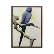 Quadro Decor Coleção Vibração dos pássaros 01