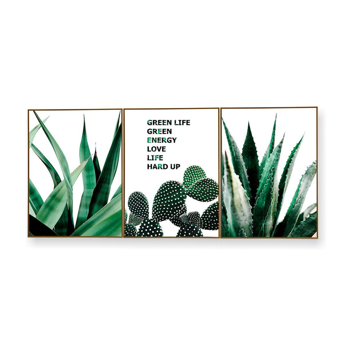 Quadro Decor Kit Coleção Cactus Espada