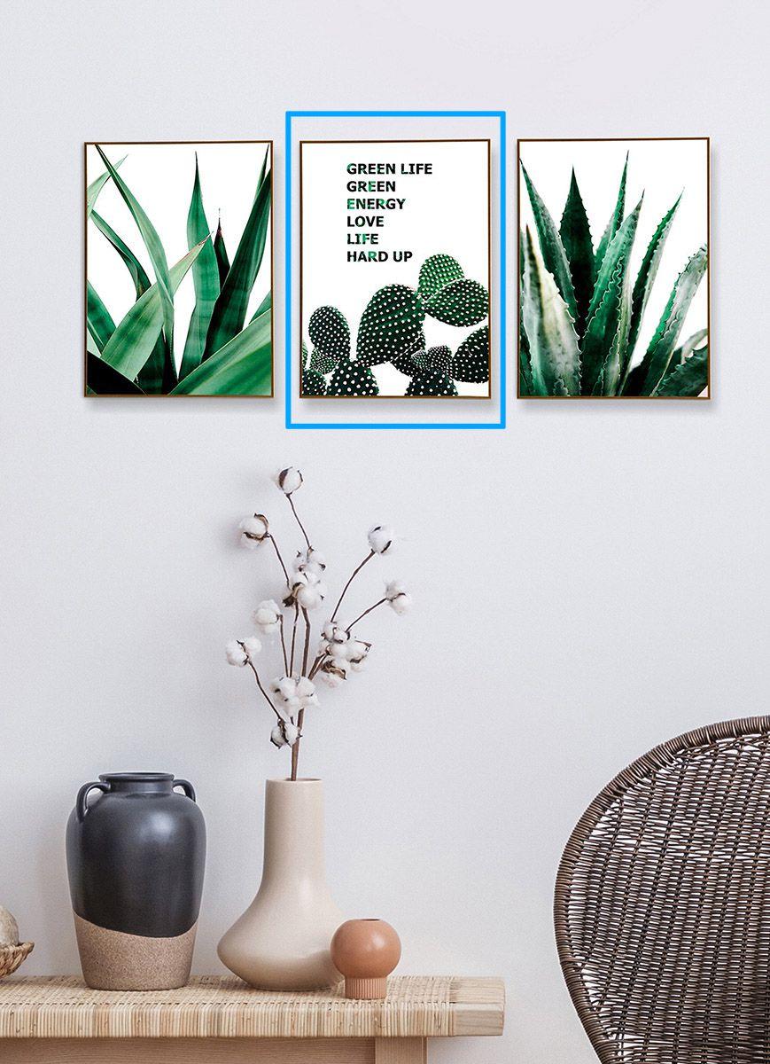 Quadro Decor Coleção Cactus Espada B