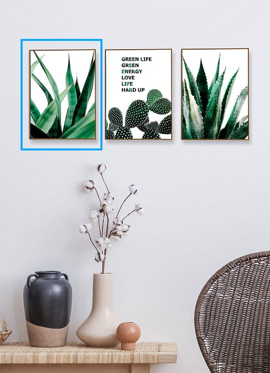 Quadro Decor Coleção Cactus Espada C