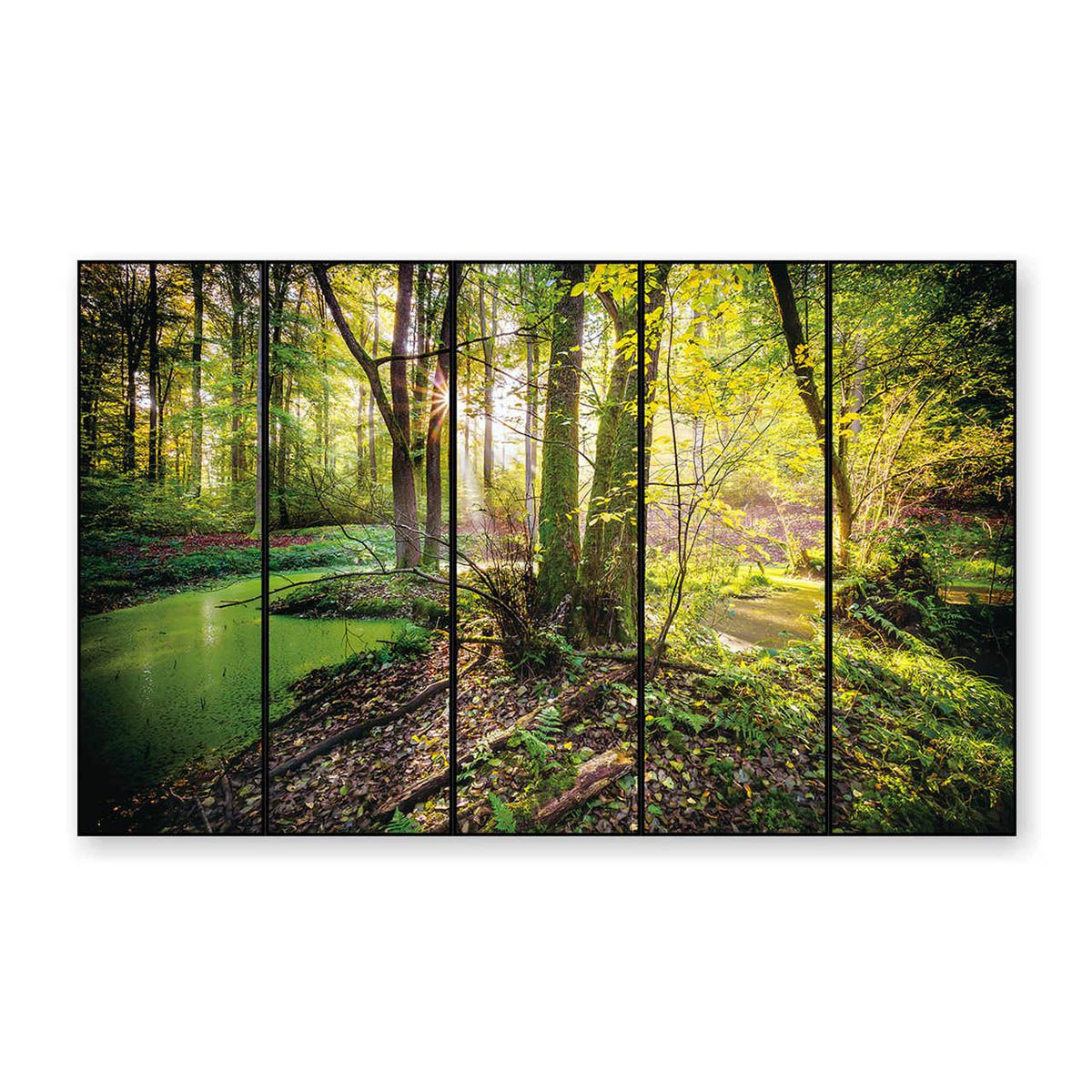 Quadro Decor A Floresta