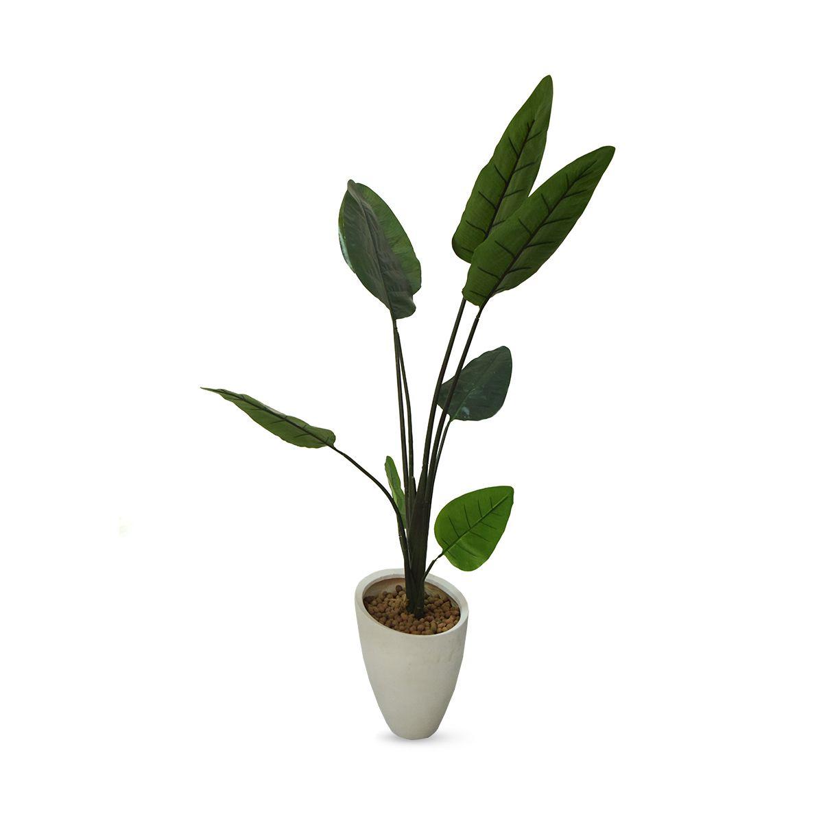 Planta Bananeira Permanente 1,80 cm