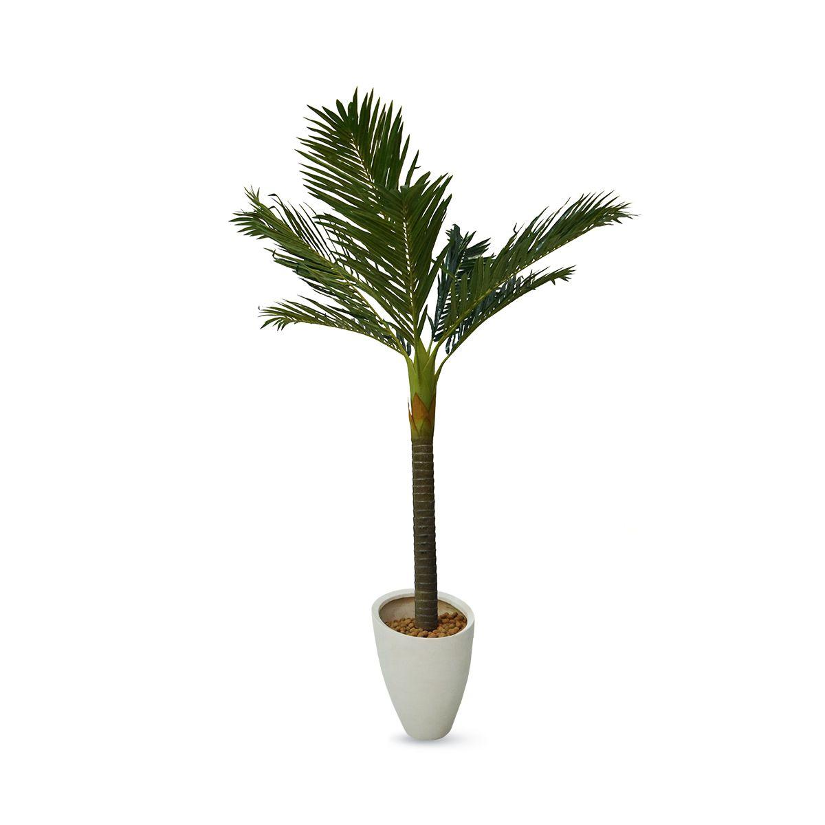 Planta Palmeira Permanente 1,50 cm