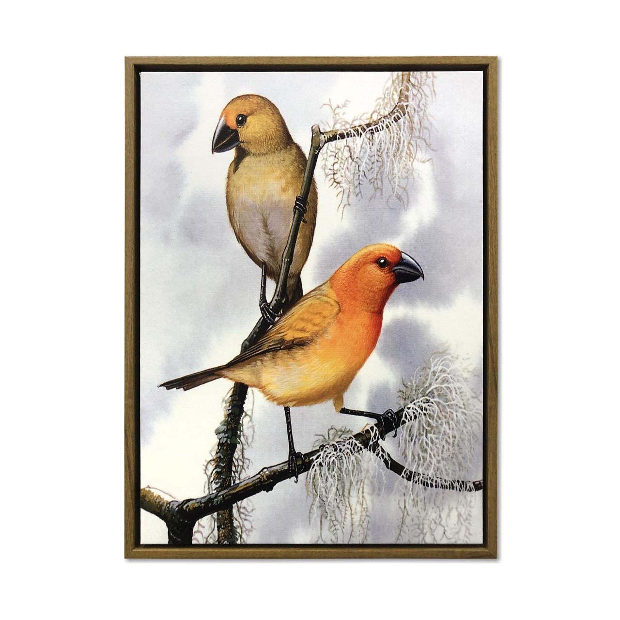 Quadro Decor Coleção Vibração dos pássaros 02