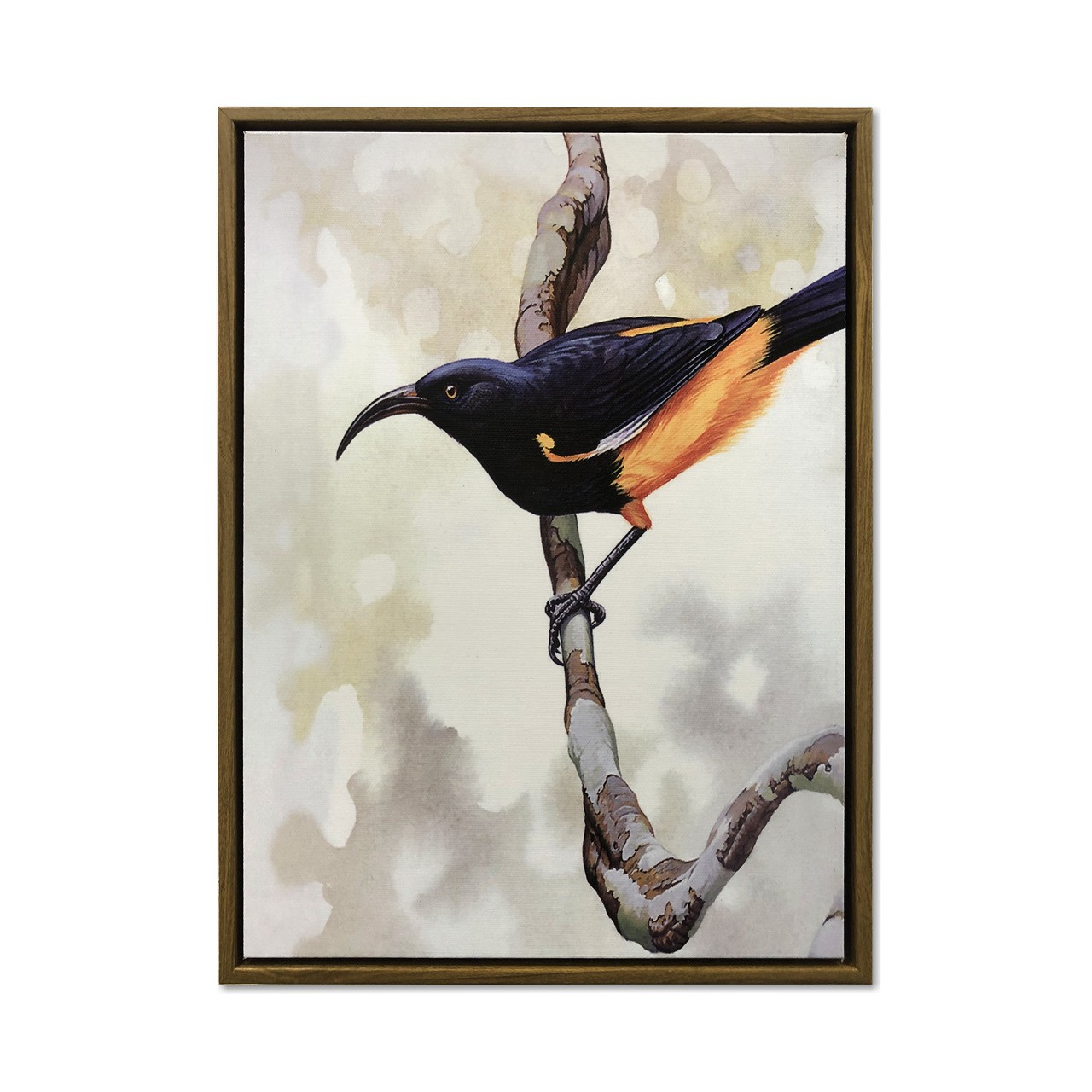Quadro Decor Coleção Vibração dos pássaros 03