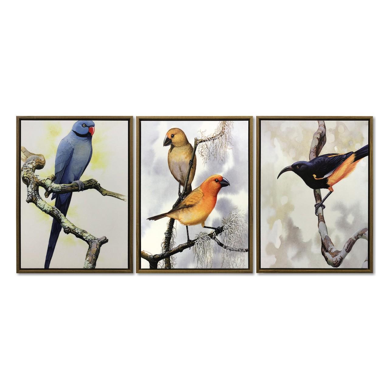 Quadro Decor Kit Coleção Vibração dos pássaros