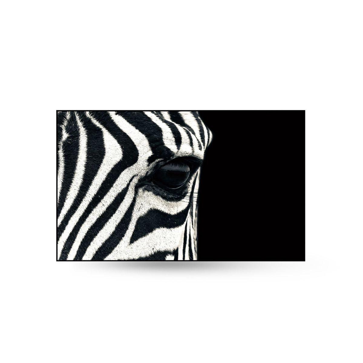 Quadro Decor A Zebra