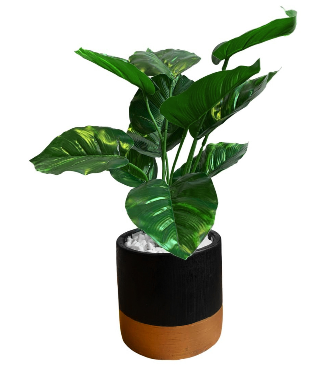 Planta Artificial Decorativa Calathea