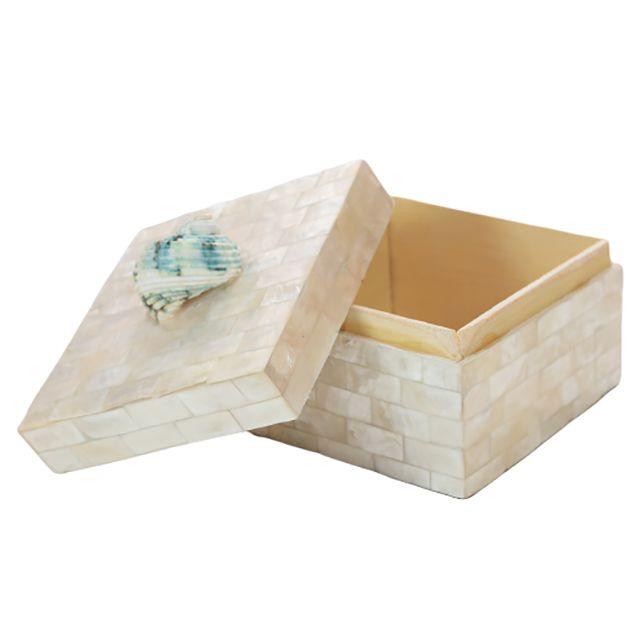 Caixa Decorativa Caribe com Concha