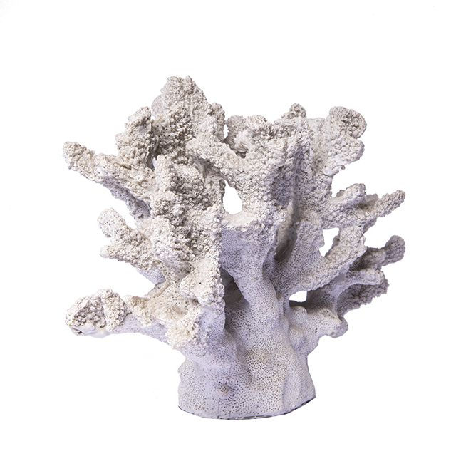Coral decorativo Off White