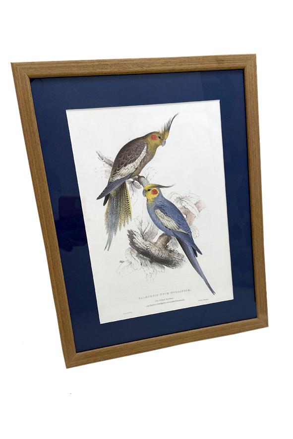 Gravura Decorativa Pássaros