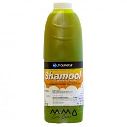 SHAMOOL CONCENTRADO 2/200 - 02 L