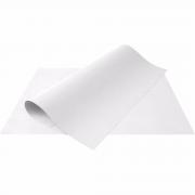 Cartolina 50x66 branco Aloform