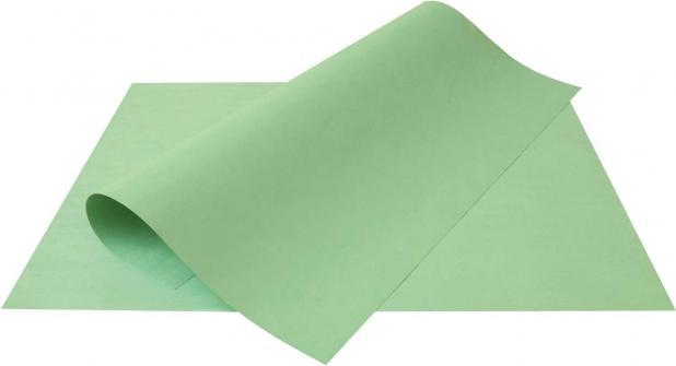 Cartolina 50x66 verde Aloform