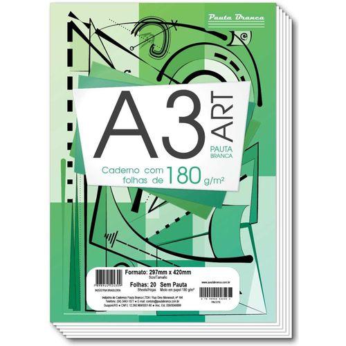Papel cartão 20 fls A3 180g Pauta Branca