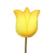 Pirulito Bolacha de Mel - Tulipa Amarela